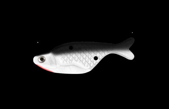 Bait Fish - Shad