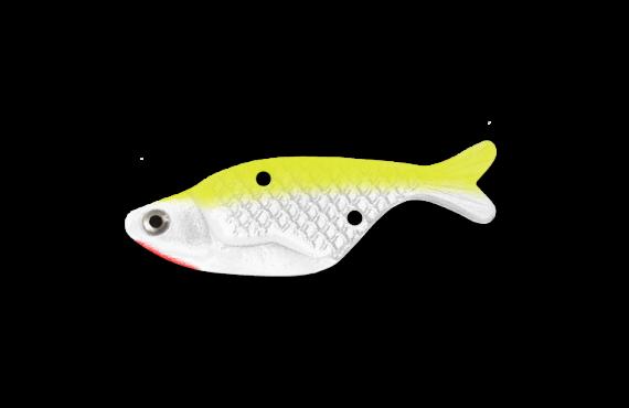Bait Fish - SFC